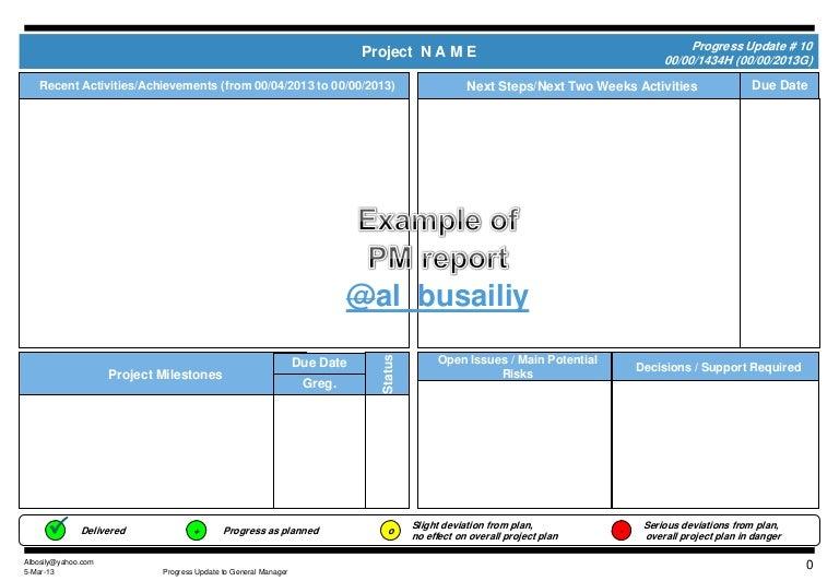 Example of progress report – Project Progress Report