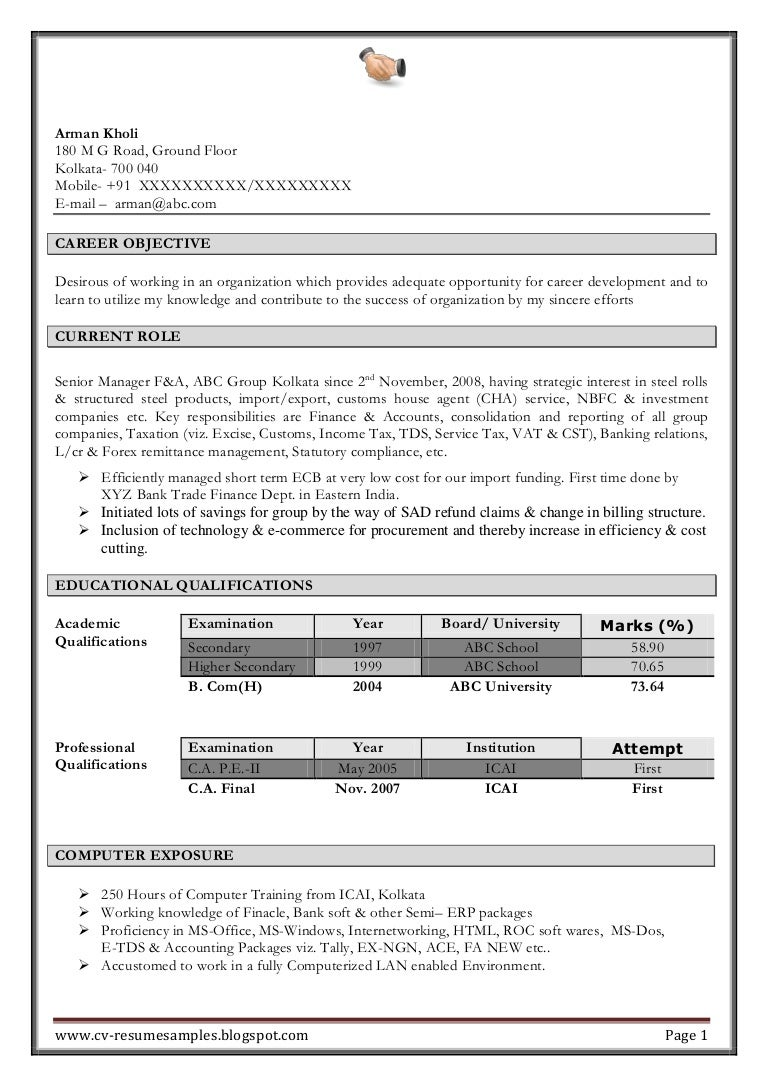 excellent work experience professional chartered accountant resume sa