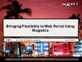 Bringing Flexibility to a Web Portal Using Magnolia