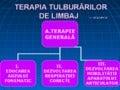 Exercitii pentru dezv.auzului_fonematic_aurelia_nica