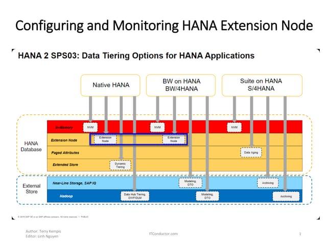 Configuring and Monitoring HANA Extension Node