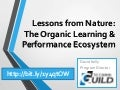 Lessons from Nature: Exploring the Learning and Performance Ecosystem