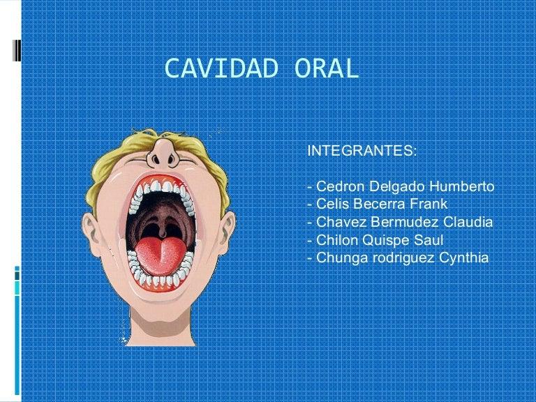 Anatomia, fisiologia y patologia de la boca