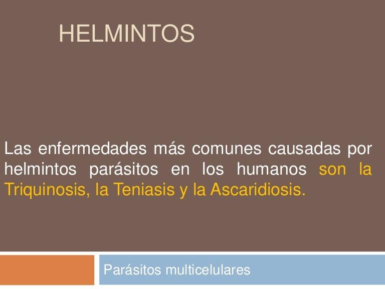 helmintos definicion)