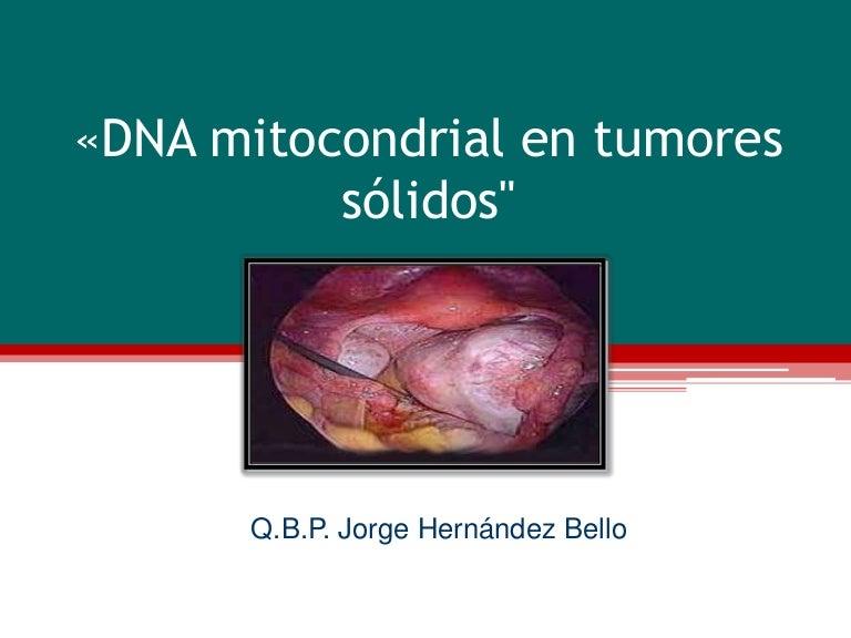 mitocondrias y cáncer de próstata