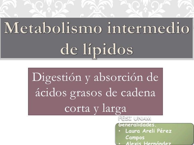 Metabolismo intermedio de lípidos (1)