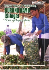 Extension No.2. Silage Production
