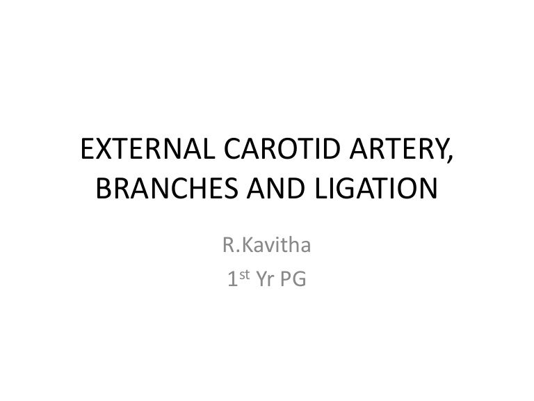 External Carotid Artery Branches And Ligation