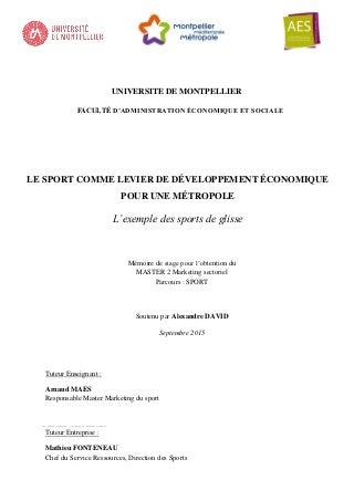 Extrait Mémoire Master II - UFR AES MONTPELLIER 2015