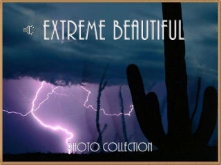 Extreme Beautiful Photo Collection