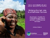 Bridging the last mile to smallholder farmers
