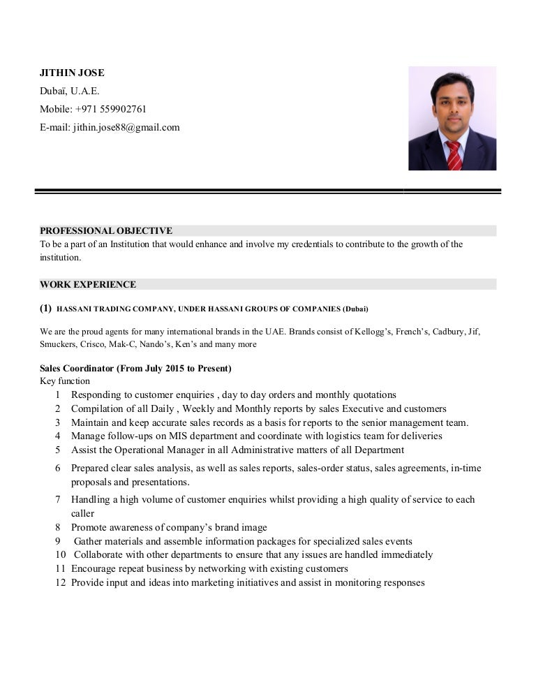 job application resume examples