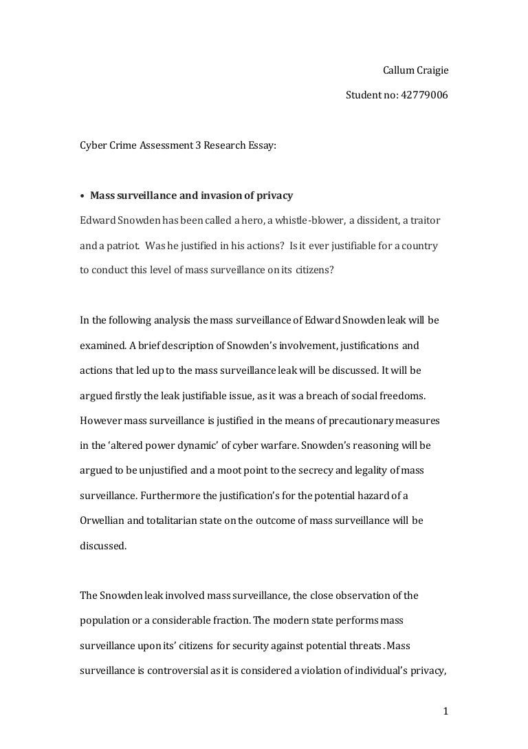 Final Copy Cyber Crime Research Essay