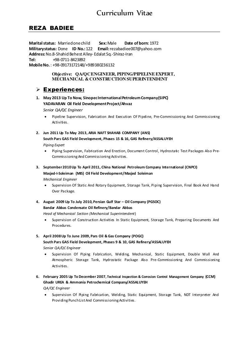 Curriculum Vitae Reza Badiee