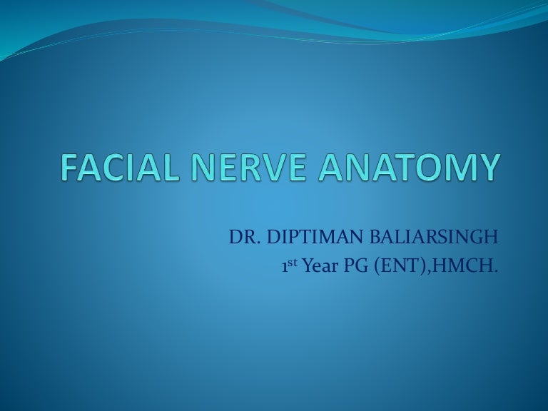 Facial muscles presentation template for powerpoint and keynote.
