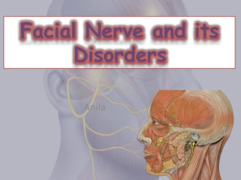 Facial Nerve And Its Disorders