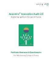 Facilitator resource info pack innovation audit 2.0.1