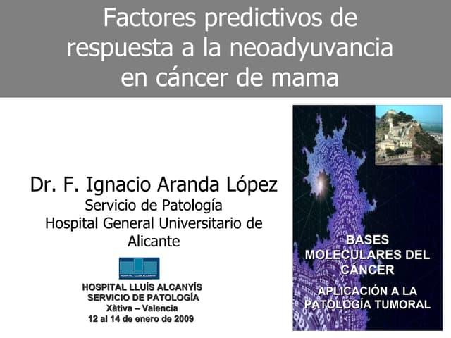 Factores Predictivos de la Respuesta A La Neoadyuvancia en el Carcinoma de Mama