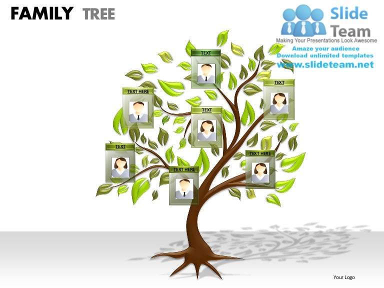 family tree powerpoint presentation slides ppt templates, Modern powerpoint