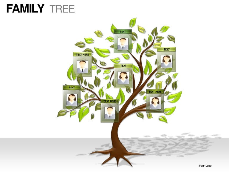 family tree powerpoint presentation templates, Powerpoint templates