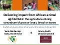 Delivering impact from African animal agriculture: The agriculture-mining conundrum of grass or brass; bread or stones