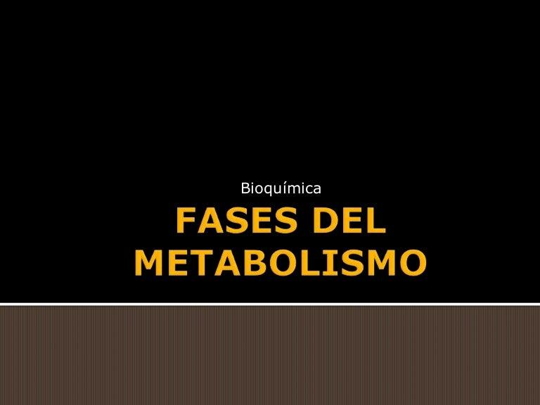 Qué son higado metabolismo ?