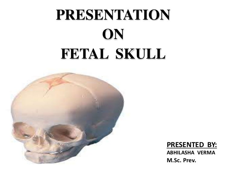 Microteaching on Fetal skull