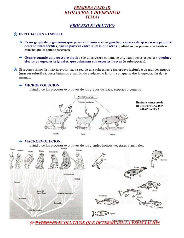 Fichas de biologia libro 2