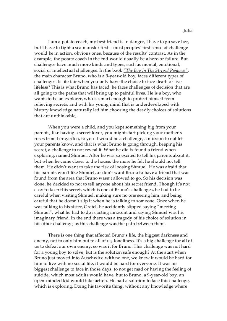 essay about the boy in the striped pyjamas