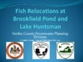 Fish Relocations at Brookfield Pond and Lake Huntsman, May 2013