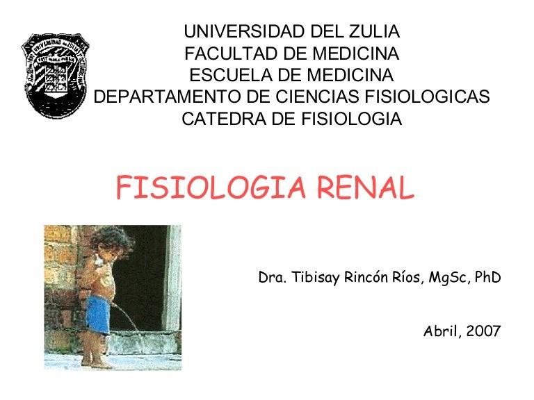 fisiologia-renal4873-thumbnail-4.jpg?cb=1183215968