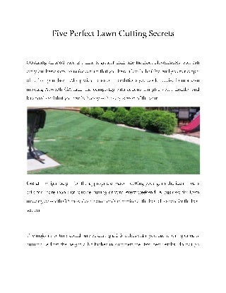 Five perfect lawn cutting secrets