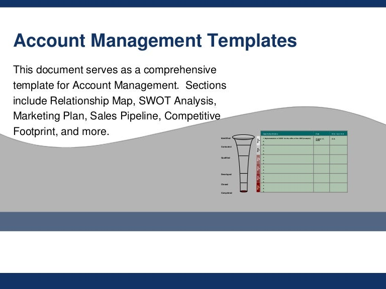 Flevy Account Management Templates – Account Plan Template