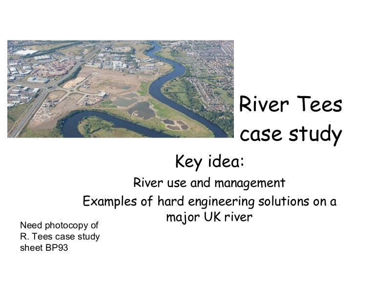 river tees lower course