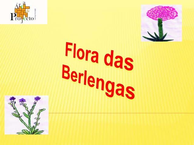 Flora da berlenga