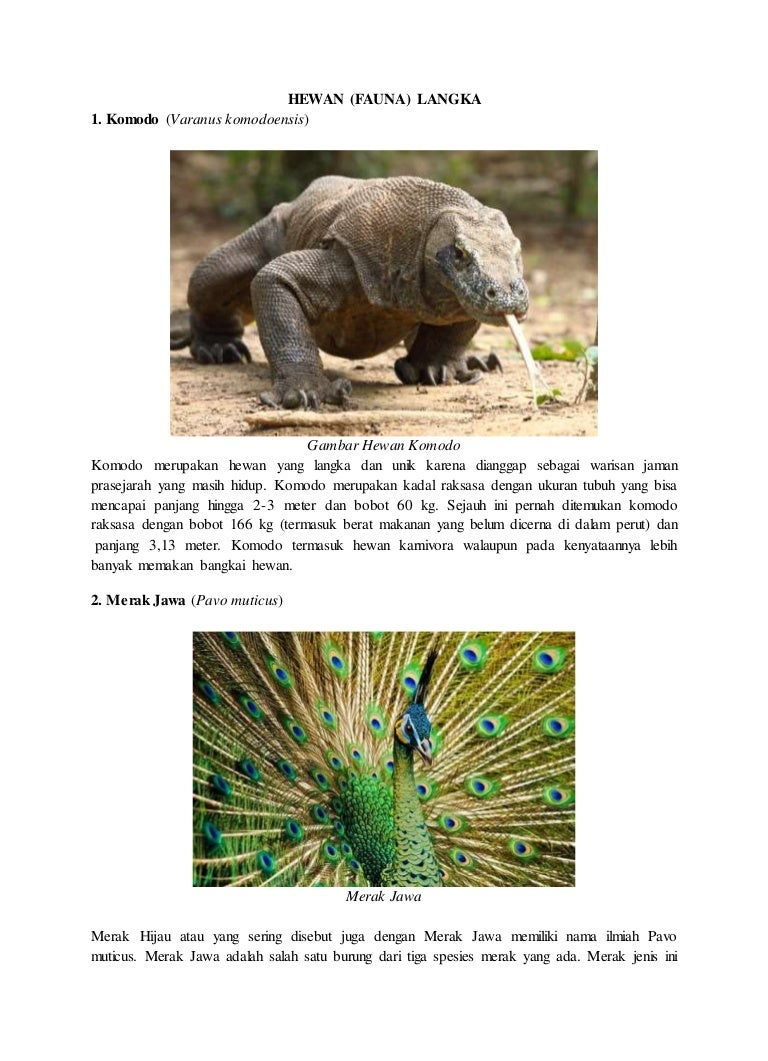 Flora Dan Fauna Langka