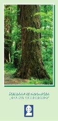 Folder ścieżka przyrodnicza Dolina Samborowo