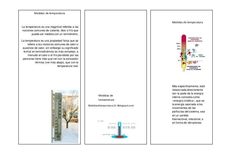 Folleto De Medidas De Temperatura De acero inoxidable 316, longitud de 100 mm. folleto de medidas de temperatura