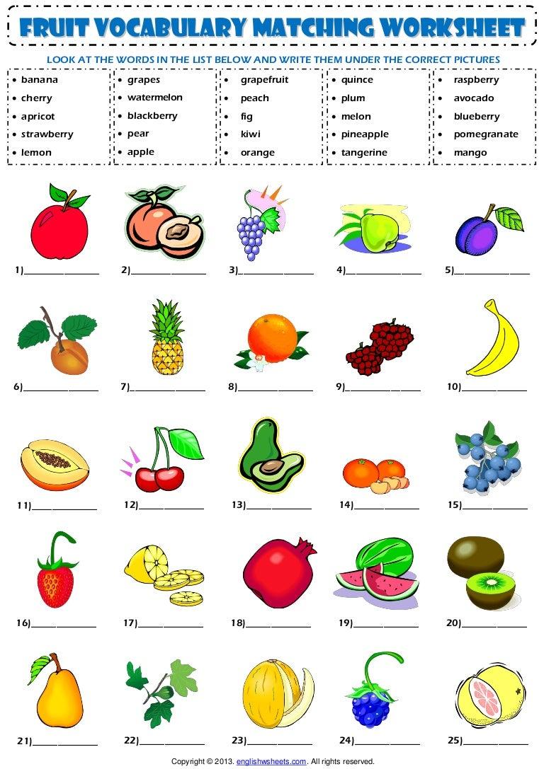 Food Fruit Vocabulary Matching Exercise Worksheet