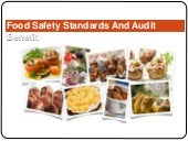 Audit Section And Its Benefit For Food Organization