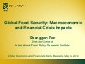 Global Food Security: Macroeconomic and Financial Crisis Impacts