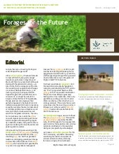 Forages for the Future Newsletter No 6