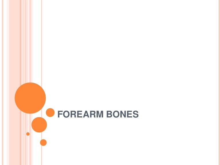 Forearm Bones