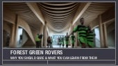 Why I Love Forest Green Rovers...& You Should Too