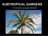 Subtropical Gardens in the Netherlands