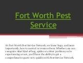 Fort worth pest service