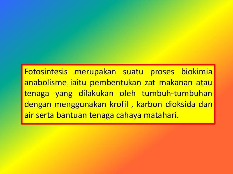 Fotosintesis Sains Tahun 4