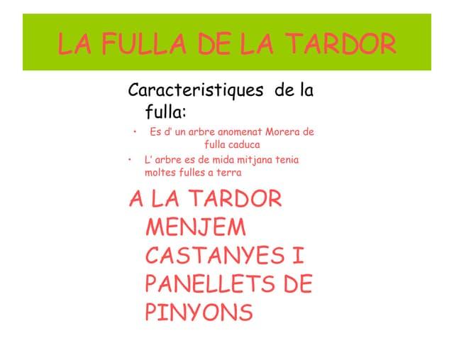 Fullla Tardor2