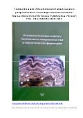 Fundamental aspects of the safe disposal of radioactive waste in geological formations