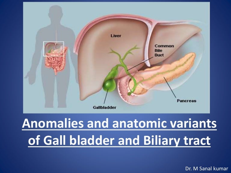 Gall Bladder Biliary Tract Anomalies And Variants